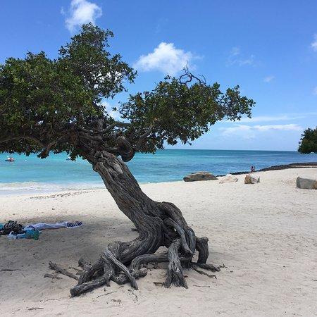 Eagle Beach: photo0.jpg