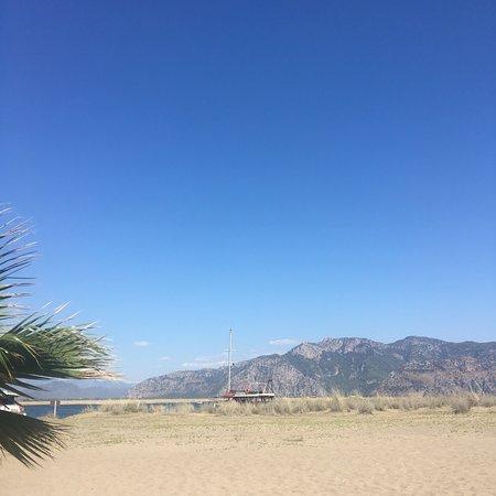 Iztuzu Beach: photo2.jpg