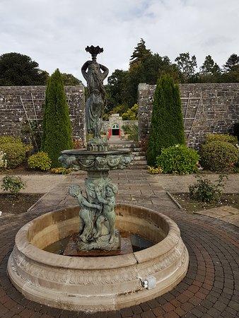 Mohill, Ierland: A garden snap shot