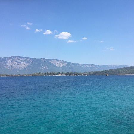 Paradise 9: photo3.jpg