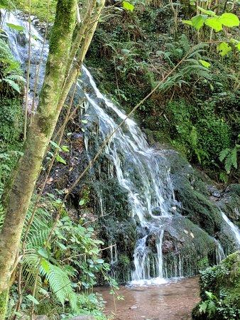 Ziga, Spain: Waterfall quite nearby