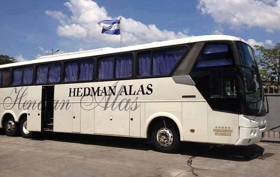 Hedman Alasn