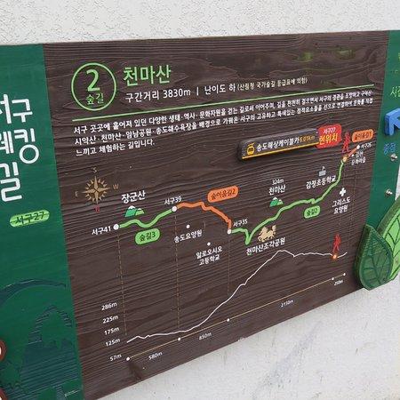 Gamcheon Culture Village: photo3.jpg