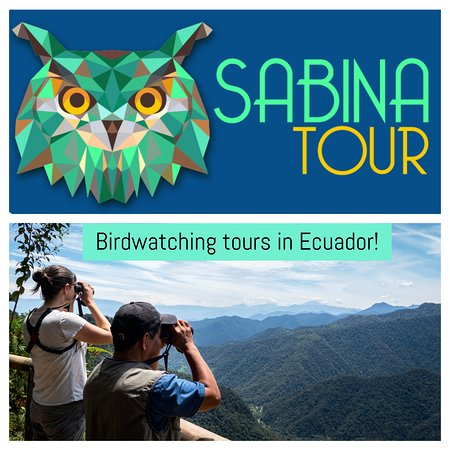 Mindo, Ecuador: Birdwatching in the Andes of Ecuador!