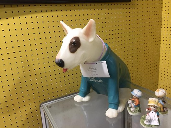 who doesn t want their very own spuds mackenzie picture of st