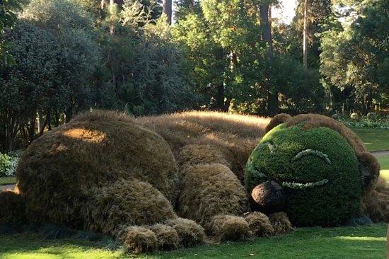 Jardin des Plantes : Escultura vegetal