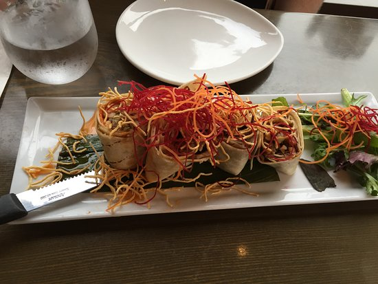 Rockville Centre, NY: Duck roll appetizer
