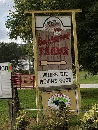 写真Beechwood Farms枚