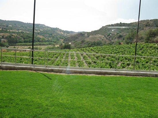 Ktima Christoudia Winery