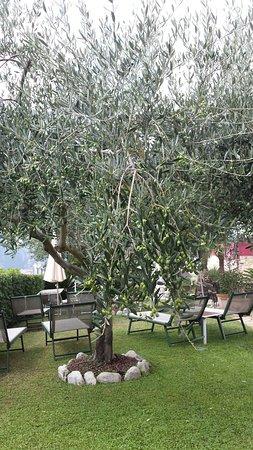 Tovo San Giacomo, Italia: 20180918_131011_large.jpg