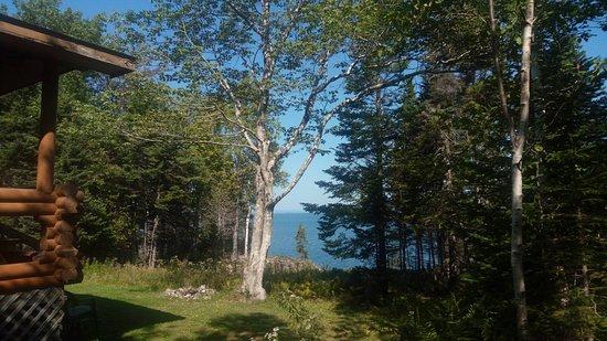 Kayak Cape Breton & Cottages: IMG_20180915_121403_large.jpg