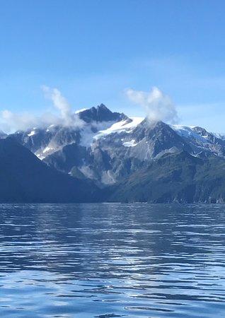 Major Marine Tours Prince William Sound Glacier Cruise