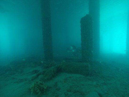 Singer Island, FL: Areas near and under the bridge