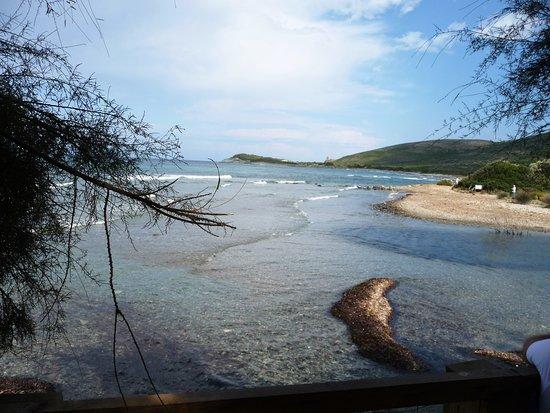 notre terrasse Picture of Paillote les Tamaris, Ersa