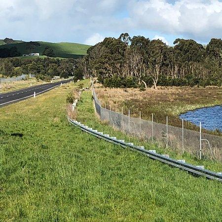Almurta, Úc: Candowie Reservoir
