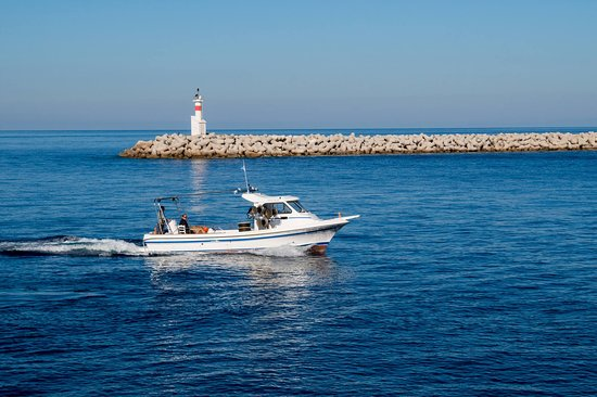 Lemnos Fishing Trips