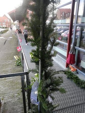 Langeskov, Danmark: Tynd