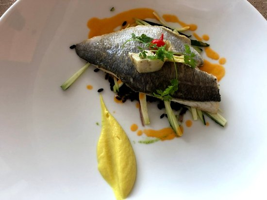 Plougasnou, France : Sea Bream
