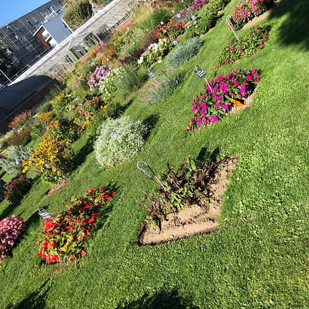 Jardin des Plantes Photo