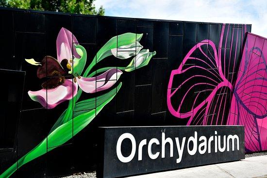 Centro de Interpretacion de la Orquidea Orchydarium