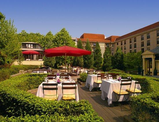 The Westin Grand Berlin: Recreation