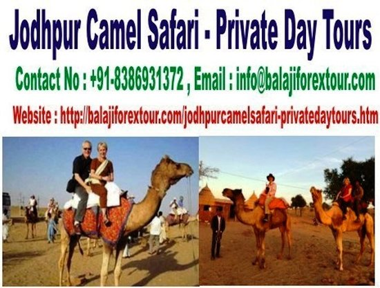 Jodhpur Camel Safari - Private Day Tours