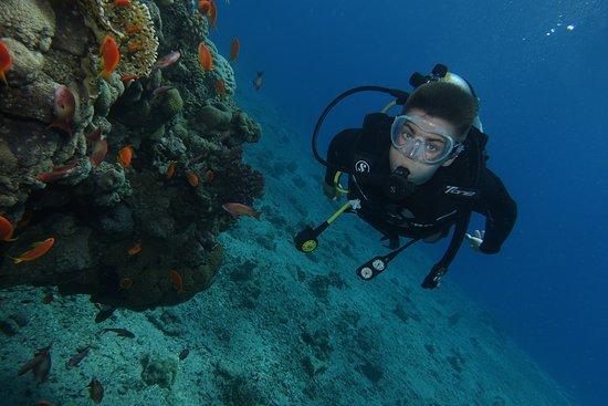 Palma Diving Resort