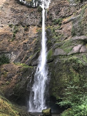 Multnomah Falls: View from a viewing point