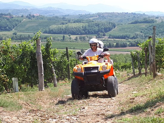 "Buttrio, Italie : Tour ""Il Collio"""
