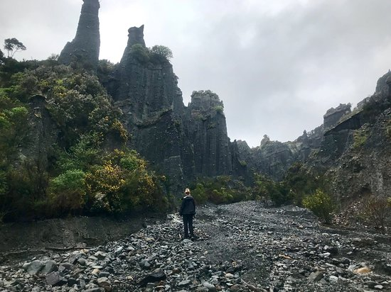 Bilde fra Wairarapa