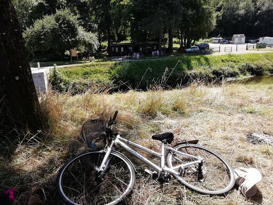Languidic, Francja: 30degrés;Vélo posé, glace dégustée! (au fond, le bar)