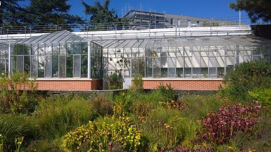 Jardin des Plantes : greenhouse
