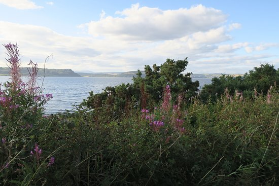 Beach Cottage B&B: View out to the Firth