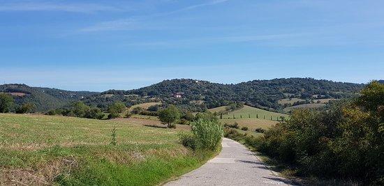 Poggio Murella, Italy: 20180912_104102_large.jpg
