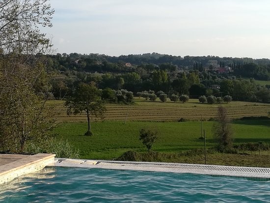 Poggio Catino, Italien: Relax in un' atmosfera familiare