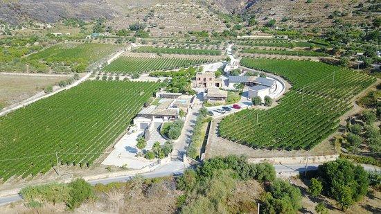 Avola, Ιταλία: vista dall'alto della Tenuta , in questa foto si vedono i vitigni principali della Cantina Palme