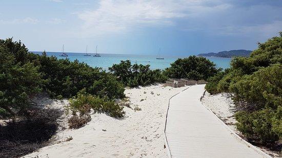 Hotel Fiore di Maggio: The 50m walk from the hotel to the beach