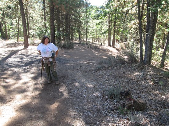 Brooks Memorial State Park: hiking a trail