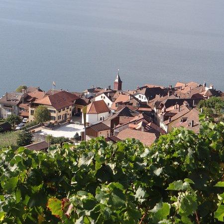 St-Saphorin-Lavaux, İsviçre: photo0.jpg