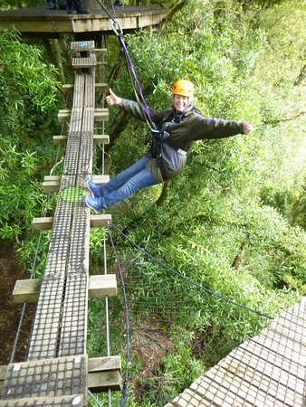 Rotorua Canopy Tours: No Hands !!!