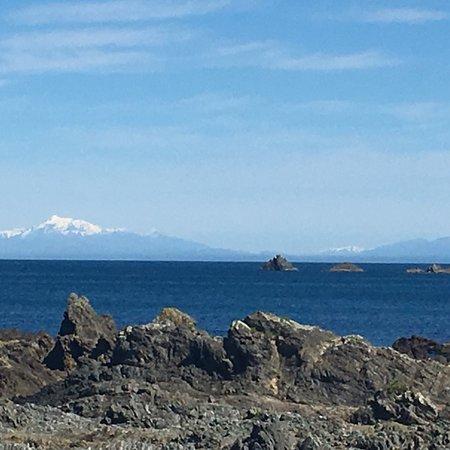 Island Bay: photo0.jpg