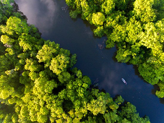 Sungai Kapur