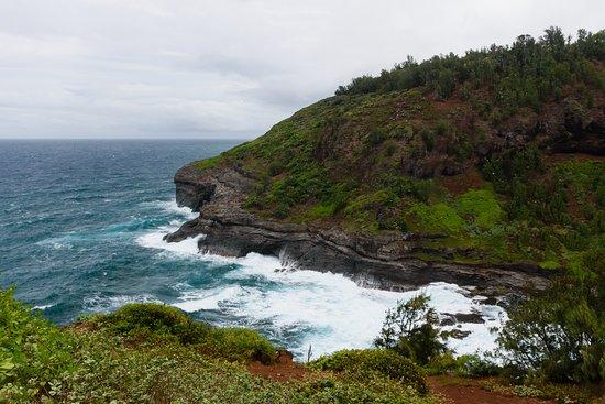 Kilauea Lighthouse: Wybrzeże