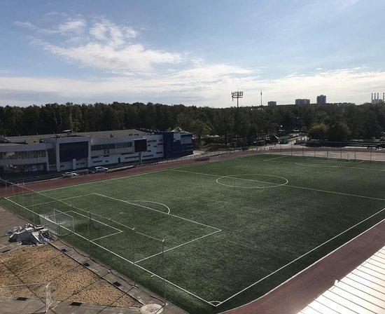 Vidnoye, Russia: Футбольное поле стадиона Металлург, смена газона 2018.