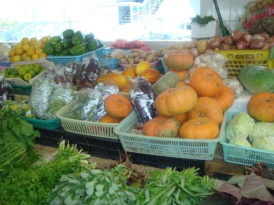 Fish Market 37 - Picture of Ajman Fishmarket - TripAdvisor