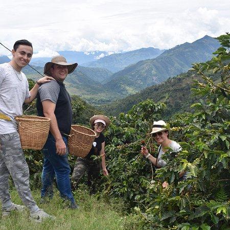 Fredonia, Colombia: photo6.jpg