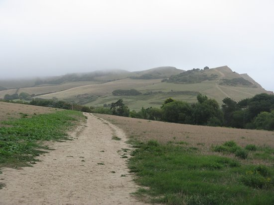 Golden Cap Estate: The path from Seatown to Golden Cap