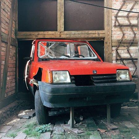 Hankensbuettel, Γερμανία: Marder im Motorraum