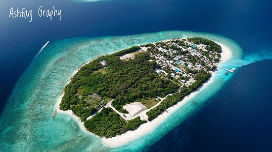 Fodhdhoo: we are located in noon Atoll, Northern side of the Maldives in where the best if everything from