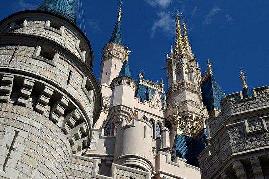 Side view of Cinderella Castle